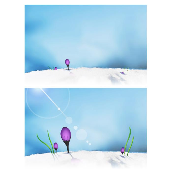 Animation carte de voeux 2008 VitavieTravel