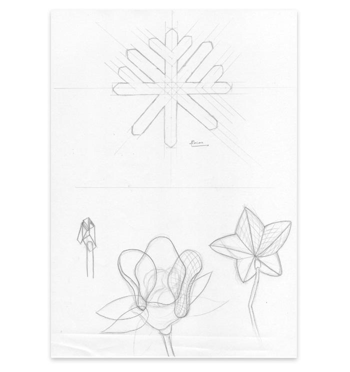 Esquisse fleur voeux 2015