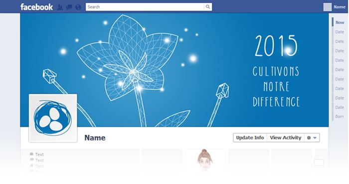 Visuel Header fleur voeux 2015 page Facebook