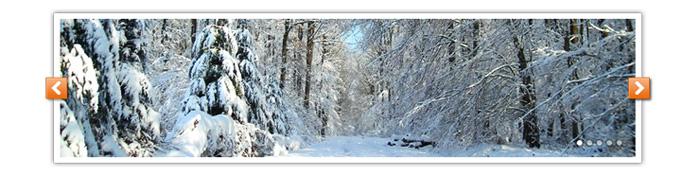 Visuel diaporama forêt sous la neige Pays de Tronçais