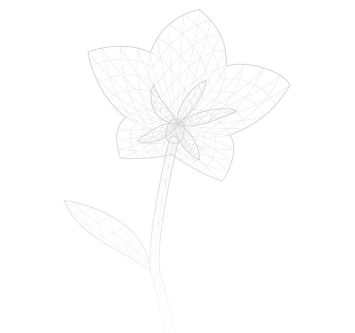 Visuel fleur voeux 2015