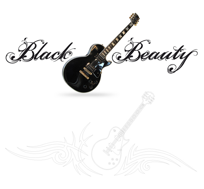 Visuel guitare Black Beauty