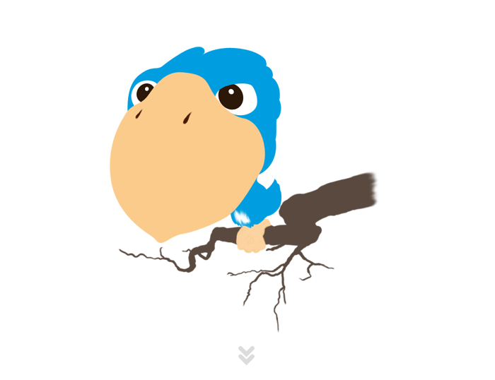 Couleurs en aplat Birdy