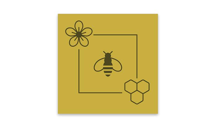 Visuel pictogrammes miel